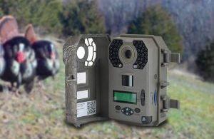 stealth cam g42ng review